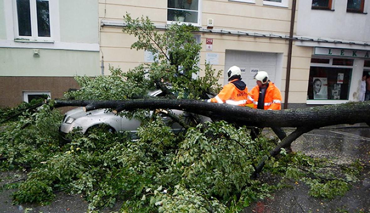 Hasiči odstraňují větve z vozu po bouřce