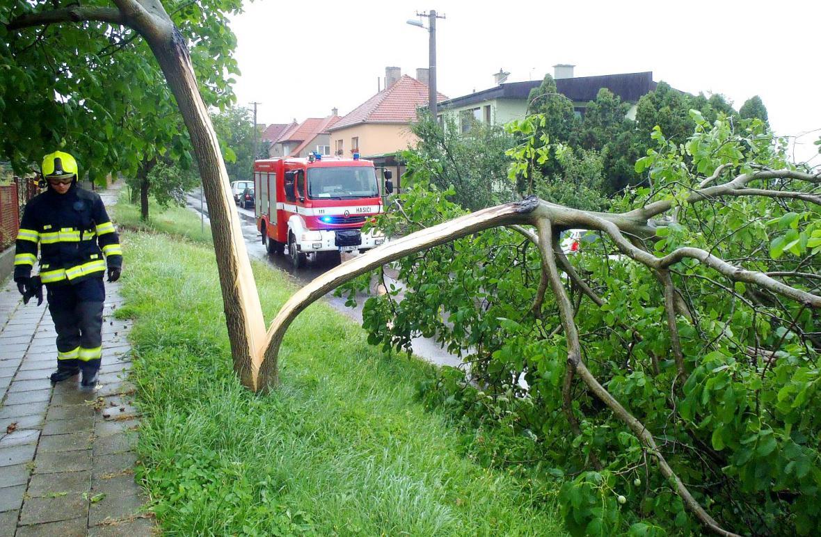 Následky bouřek zaměstnávaly hasiče