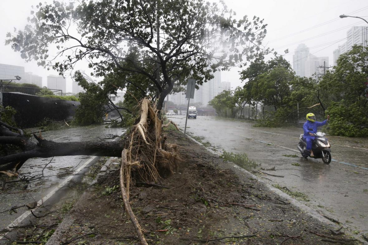 Škody po tajfunu Glenda (Rammasun)