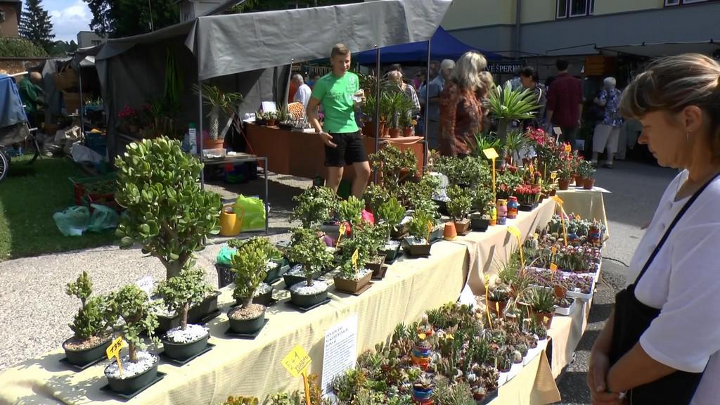 Přehlídka květin na akci Krakonošova tržnice