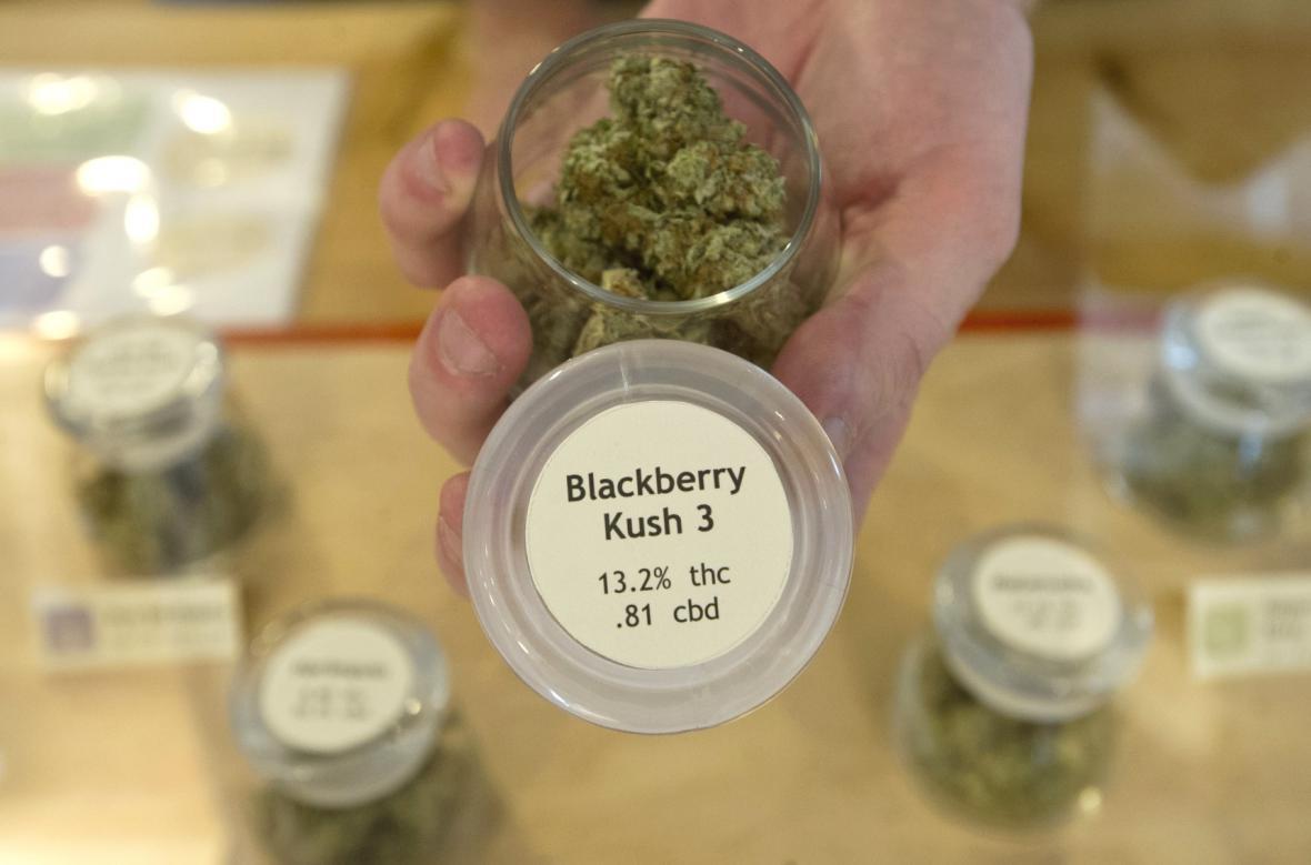 Marihuana pro lékařské účely