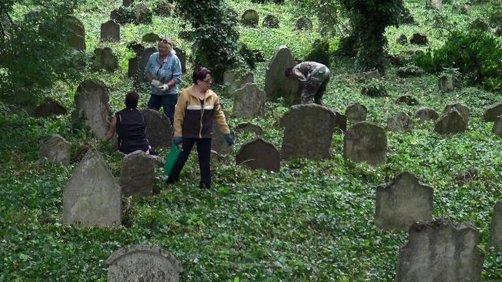 Dobrovolníci uklízejí ždovský hřbitov v Kolíně