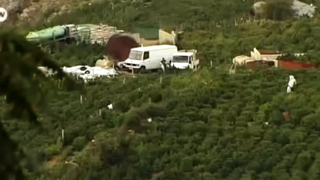 Konopná pole v Lazaratu