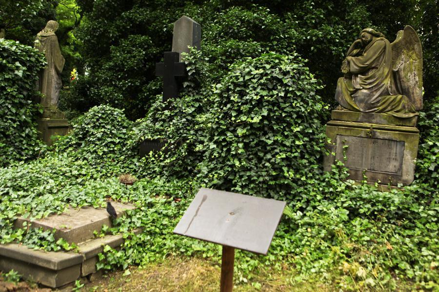 Olšanské hřbitovy