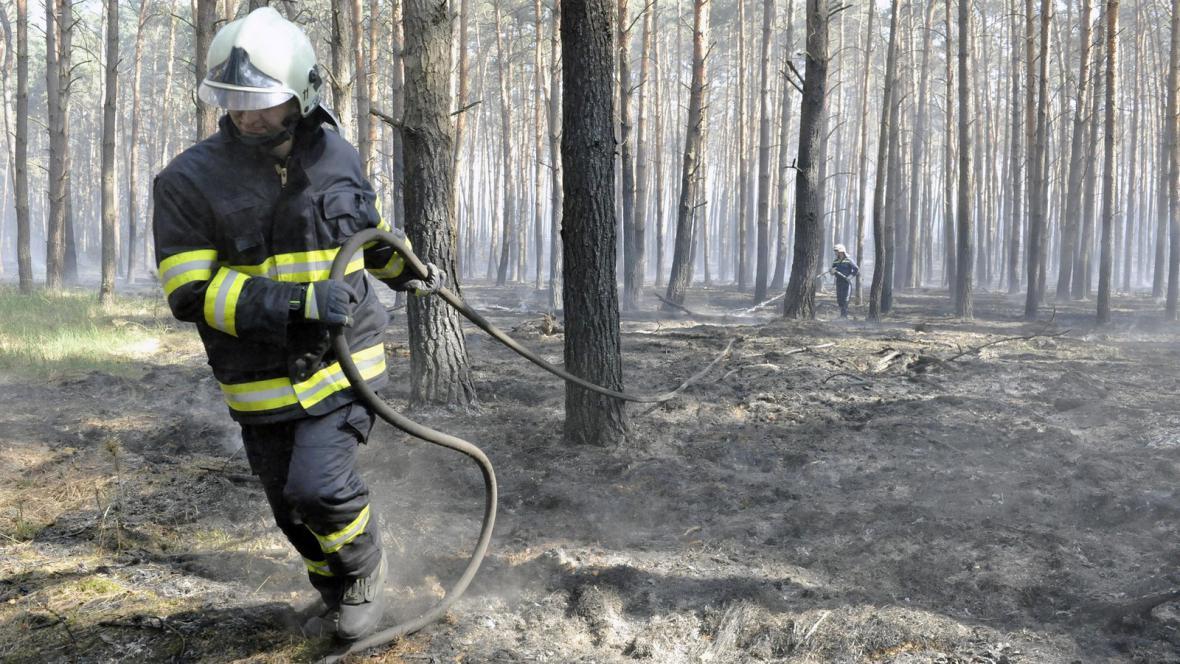 Lesní požár u Bzence na Hodonínsku