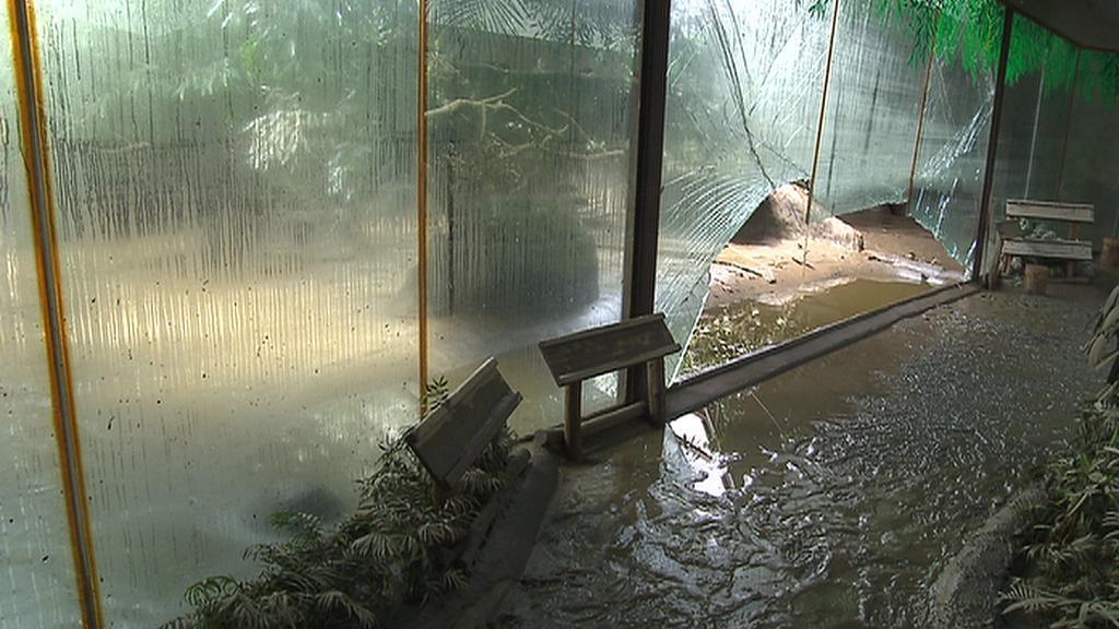Vytopená zoo