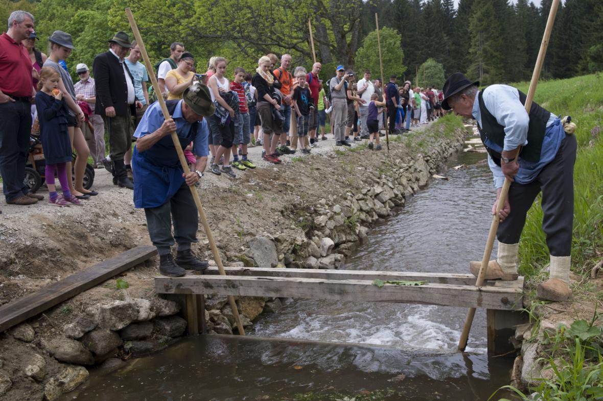Plavení dřeva po Schwarzenberském plavebním kanálu