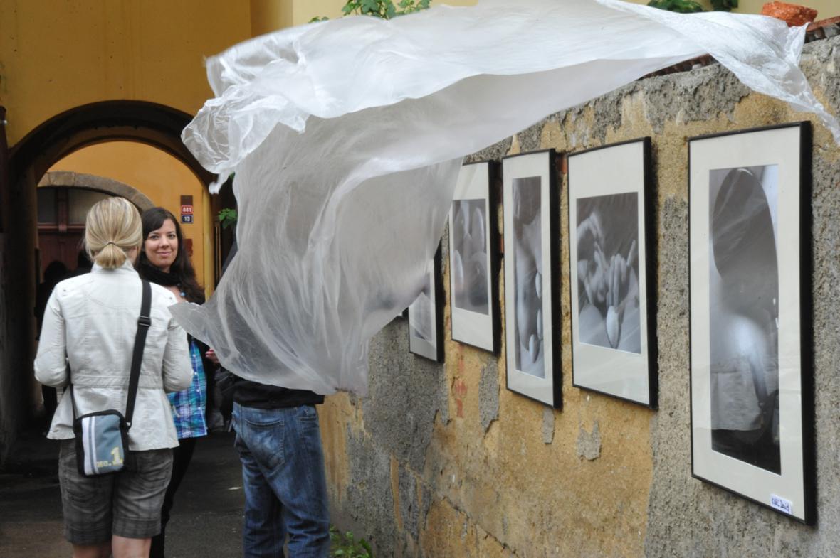 Chebské dvorky - výstavy - archivní fotografie