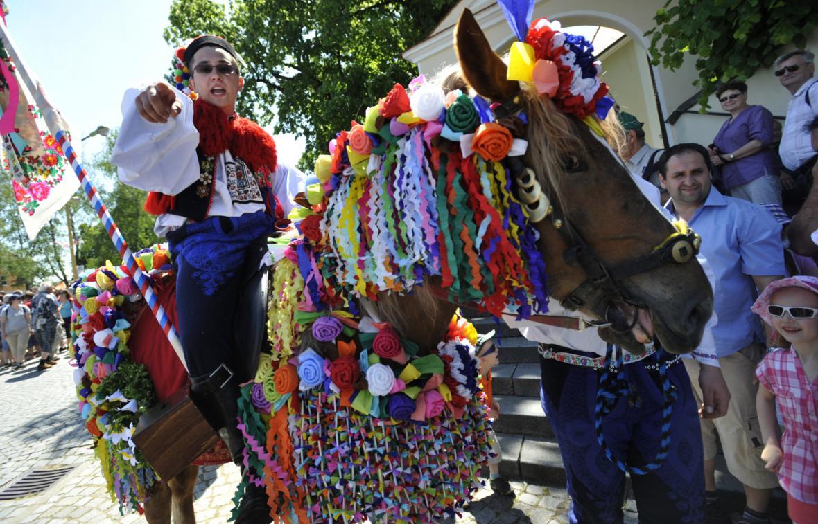 Koně královské družiny jsou bohatě ozdobení