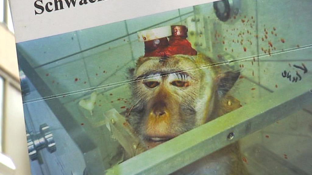 Německá strana na ochranu zvířat přišla s brutálními plakáty