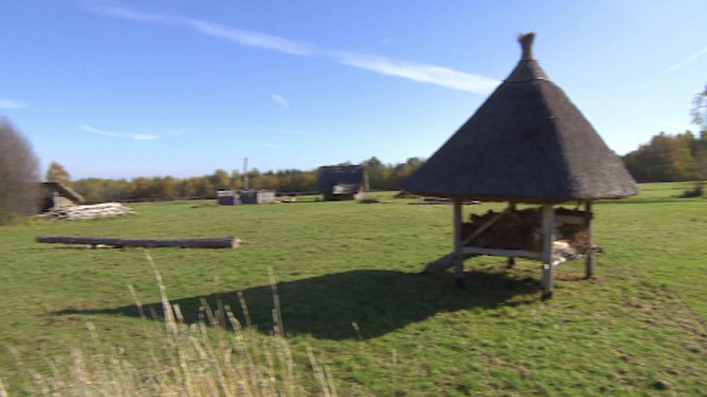 Keltská vesnice u Nasavrk