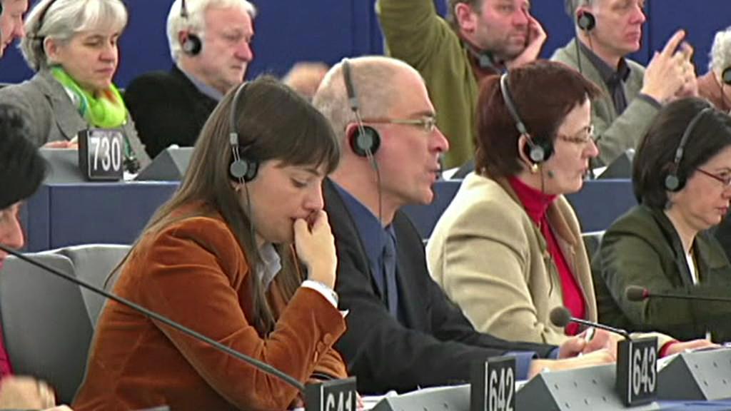 Tlumočení v europarlamentu