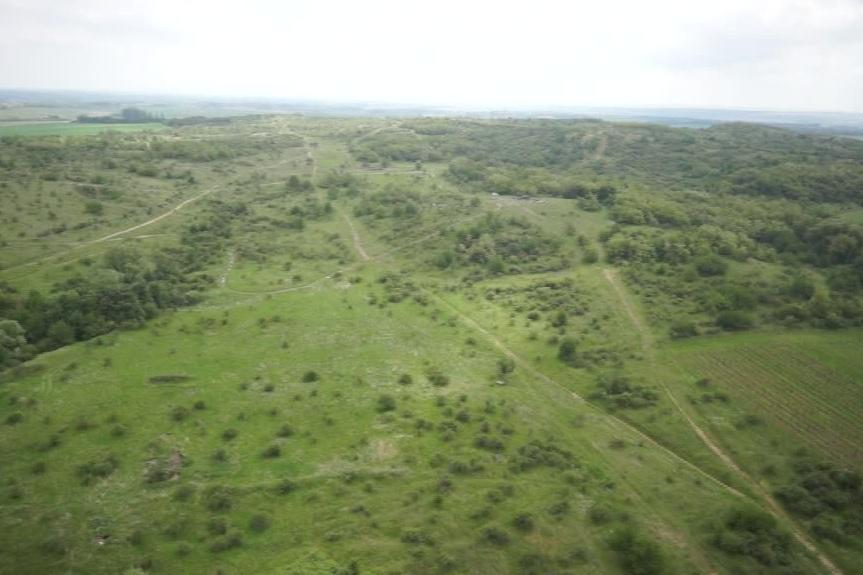 Na Načeratickém kopci vznikl unikátní biotop