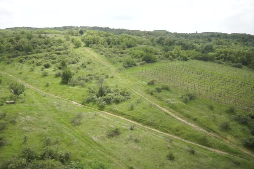 Načeratický kopec