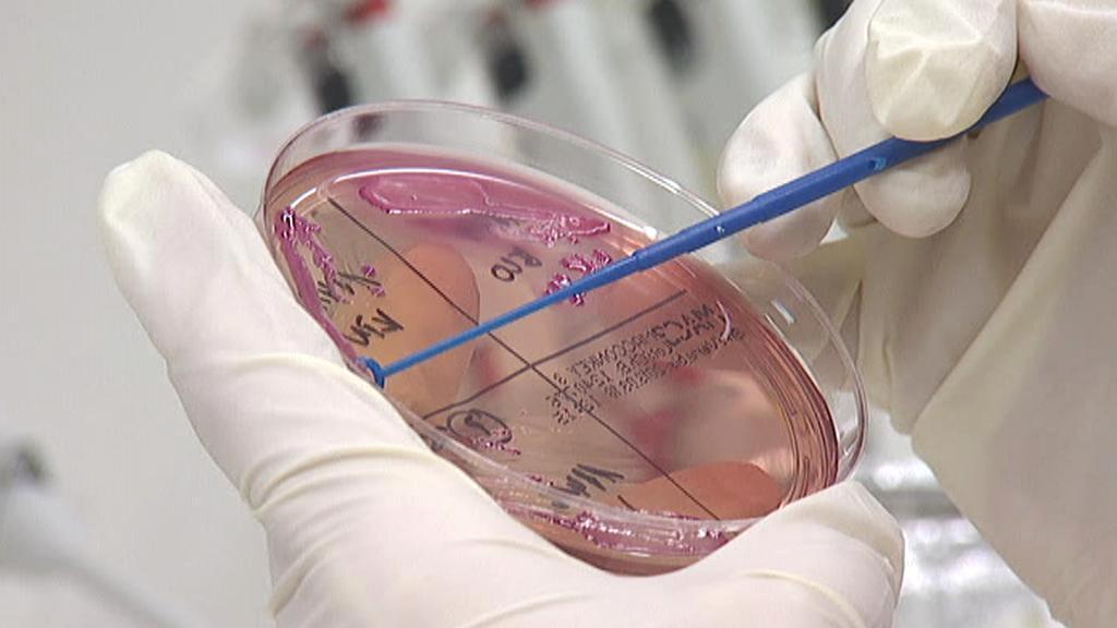 Biologická laboratoř