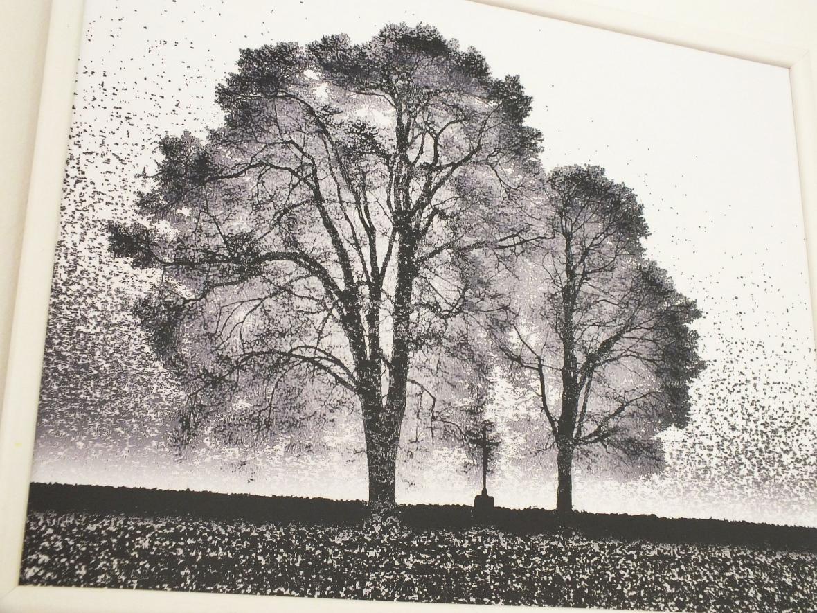 Z výstavy L. Baďurové a J. Budiše v Boskovicích