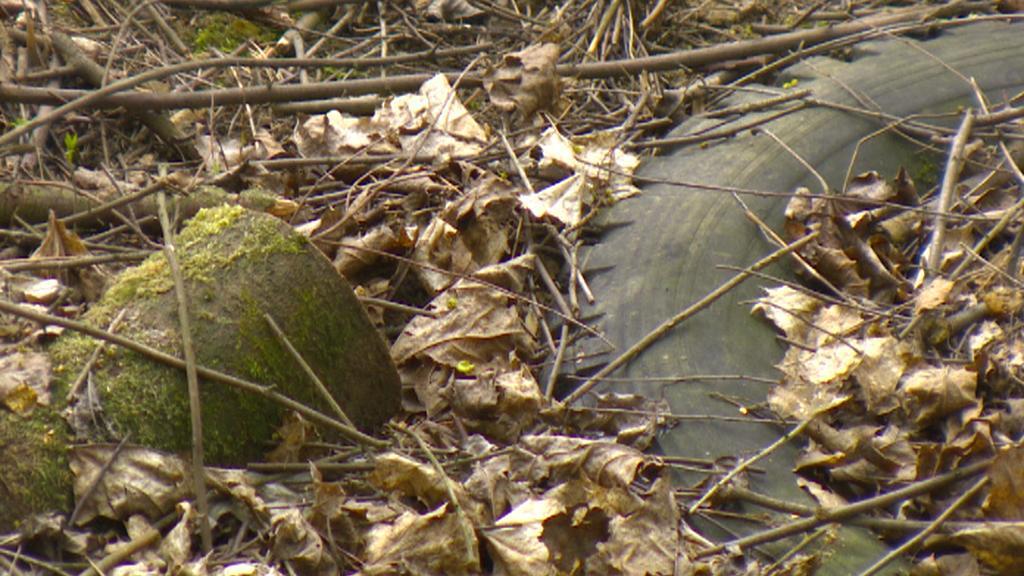 Předměty, které se v lese rozhodně nevyskytly náhodou