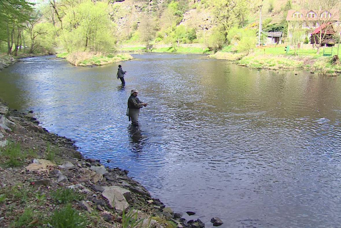 Rybáři na Dyji