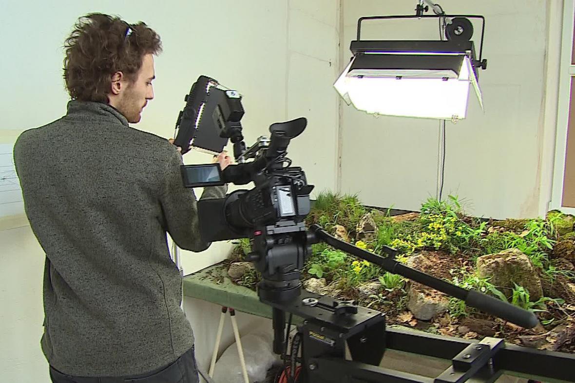 Umělý biotop využívají dokumentaristé pro natočení detailů