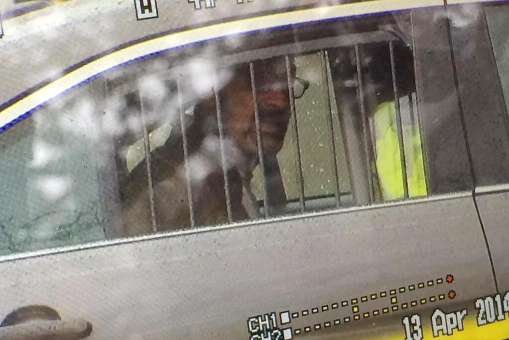 Zadržený střelec Frazier Glenn Cross