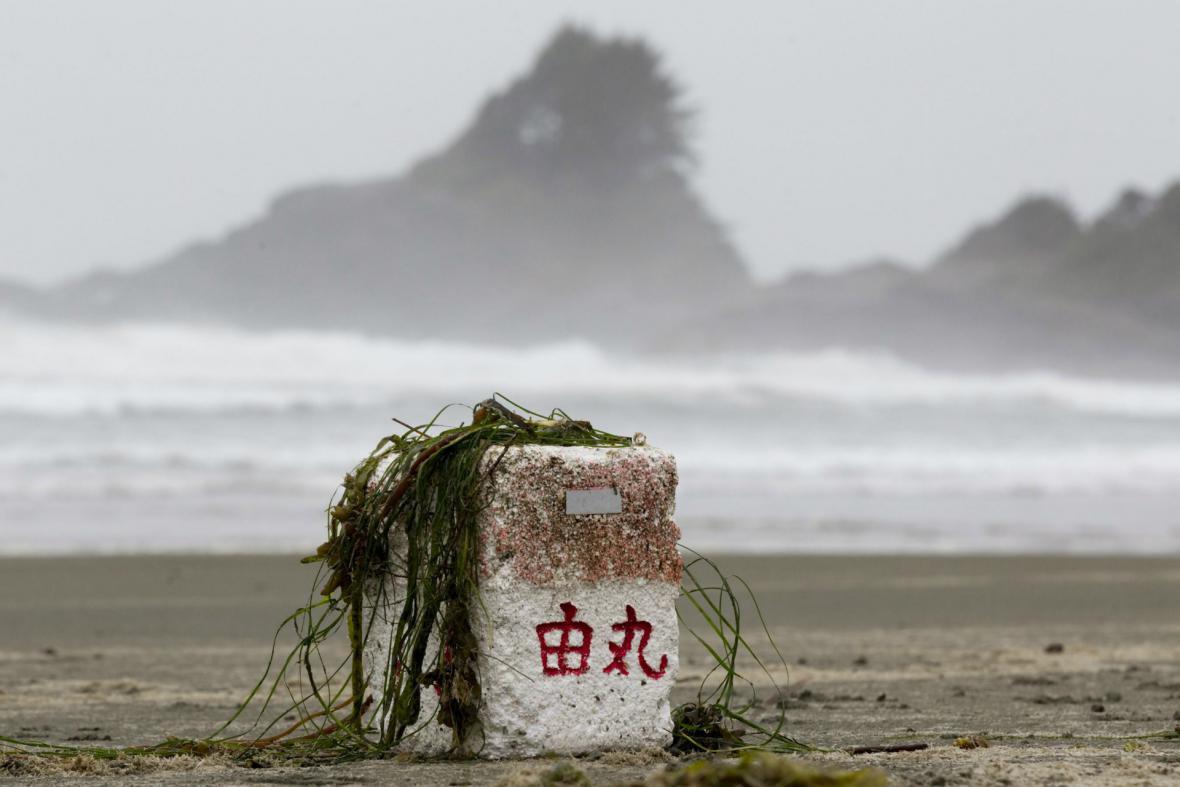 Trosky po tsunami vyplavené na pobřeží Kanady