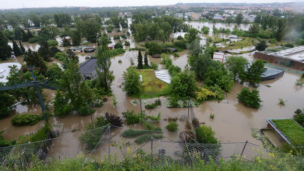 Záplavy v zoo v Praze