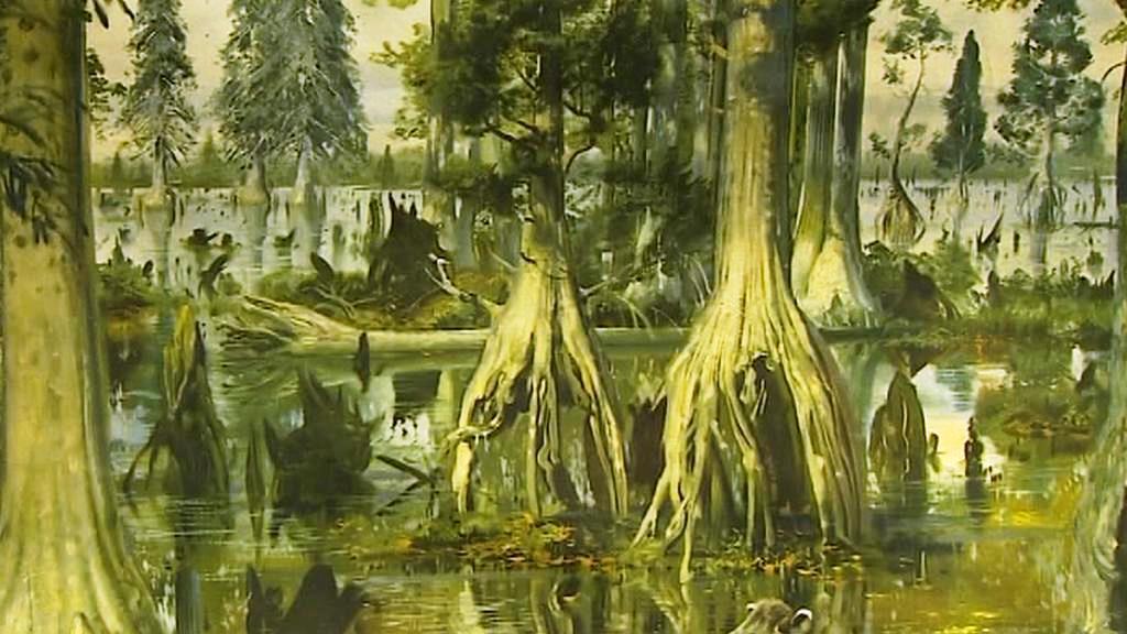 Stromy na kulovitých kořenech