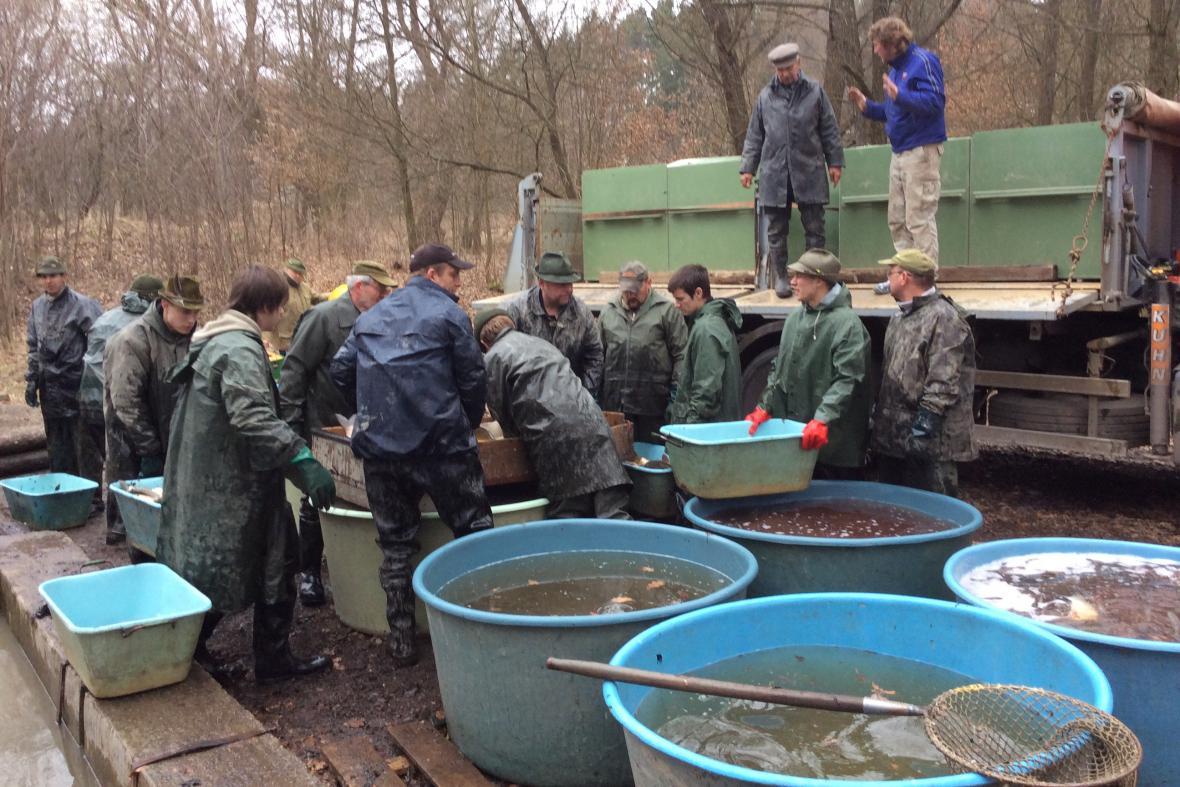 Přelov rybníka v Jedovnicích