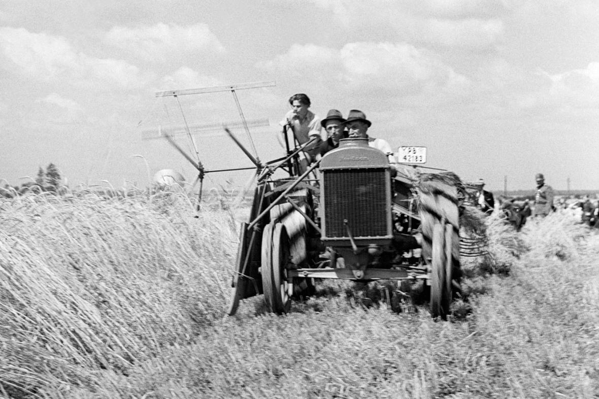 Žně v Žalkovicích v roce 1943