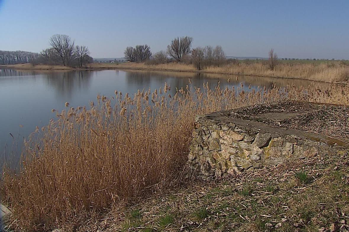 Rybníky na Pohořelicku trápí sucho