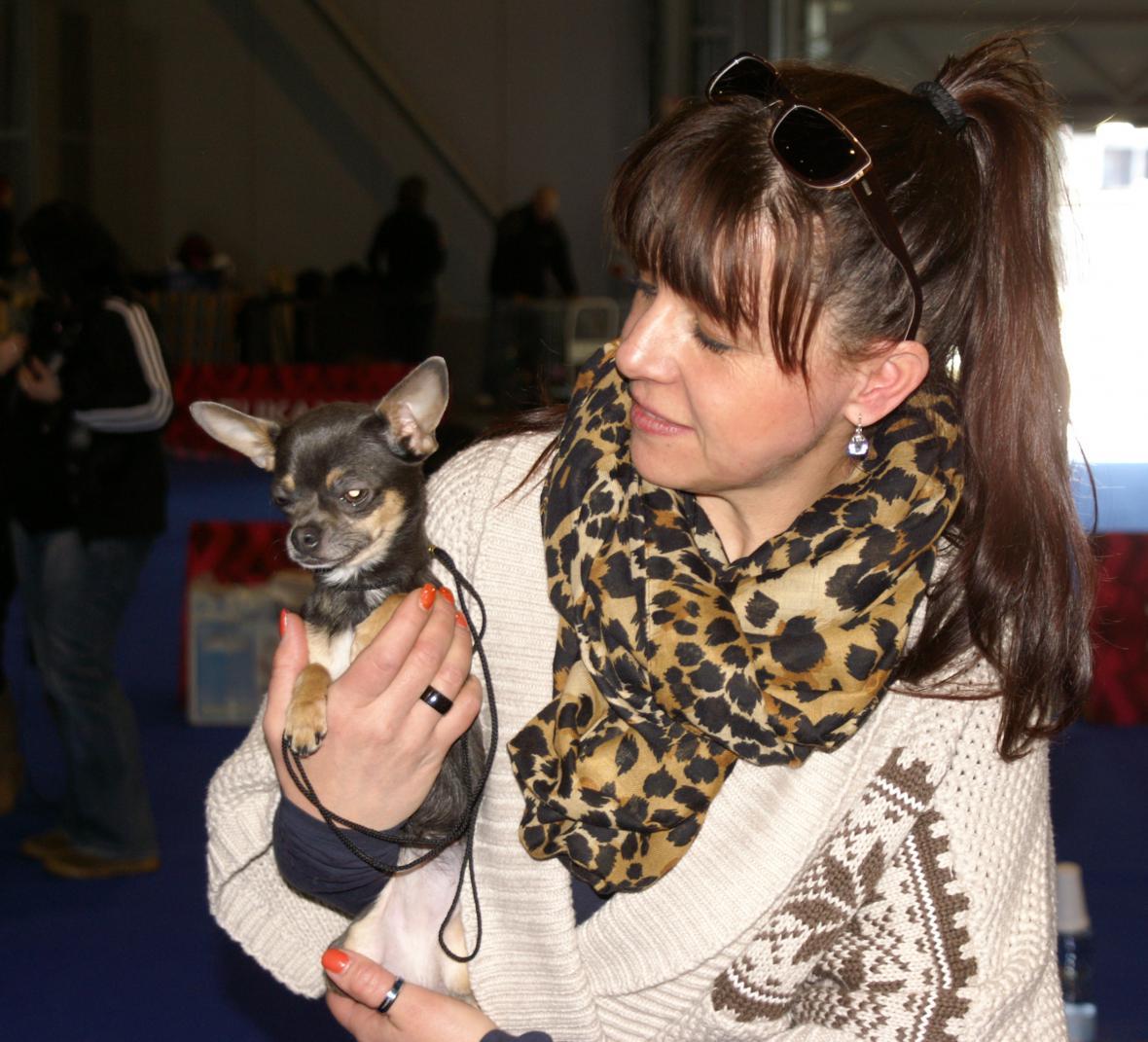 Z mezinárodní výstavy psů v Brně