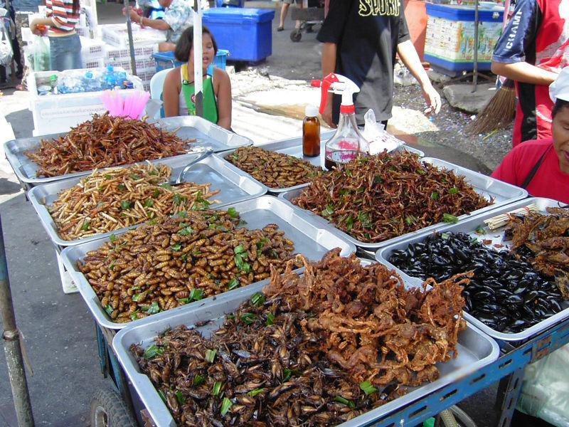 Fritovaný hmyz na stánku v Bangkoku