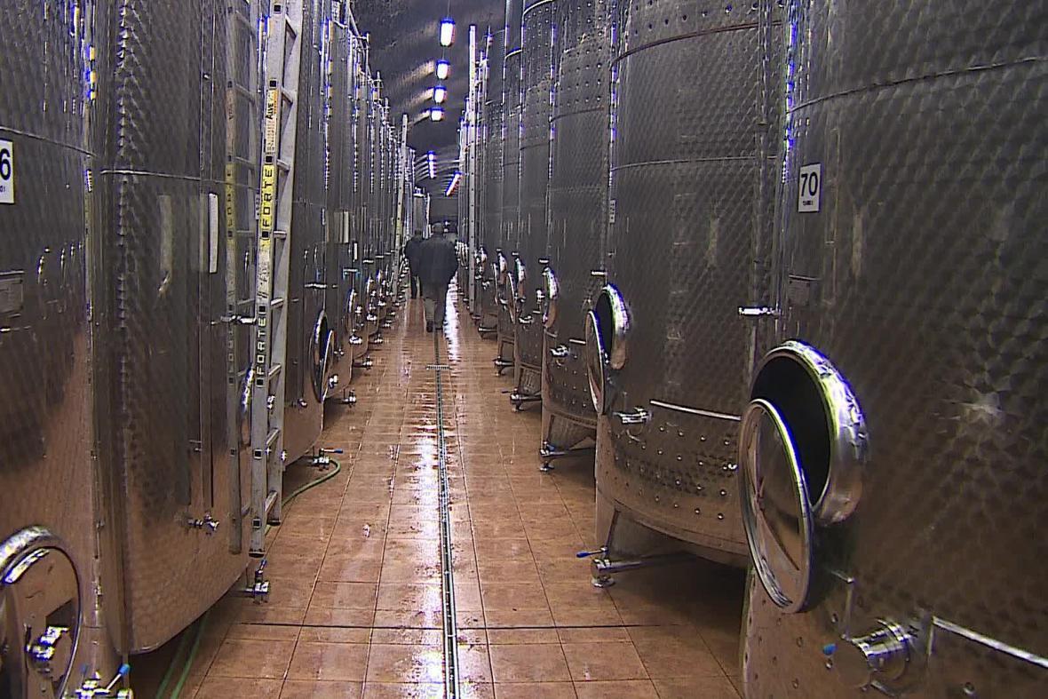 Komise si prohlíží i sklepy, v nichž se víno vyrábí