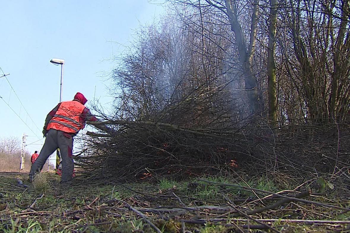 Příčina výluky - prořezávání dřevin kolem trati