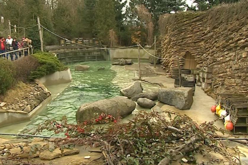 Výběh lachtanů ve zlínské zoo
