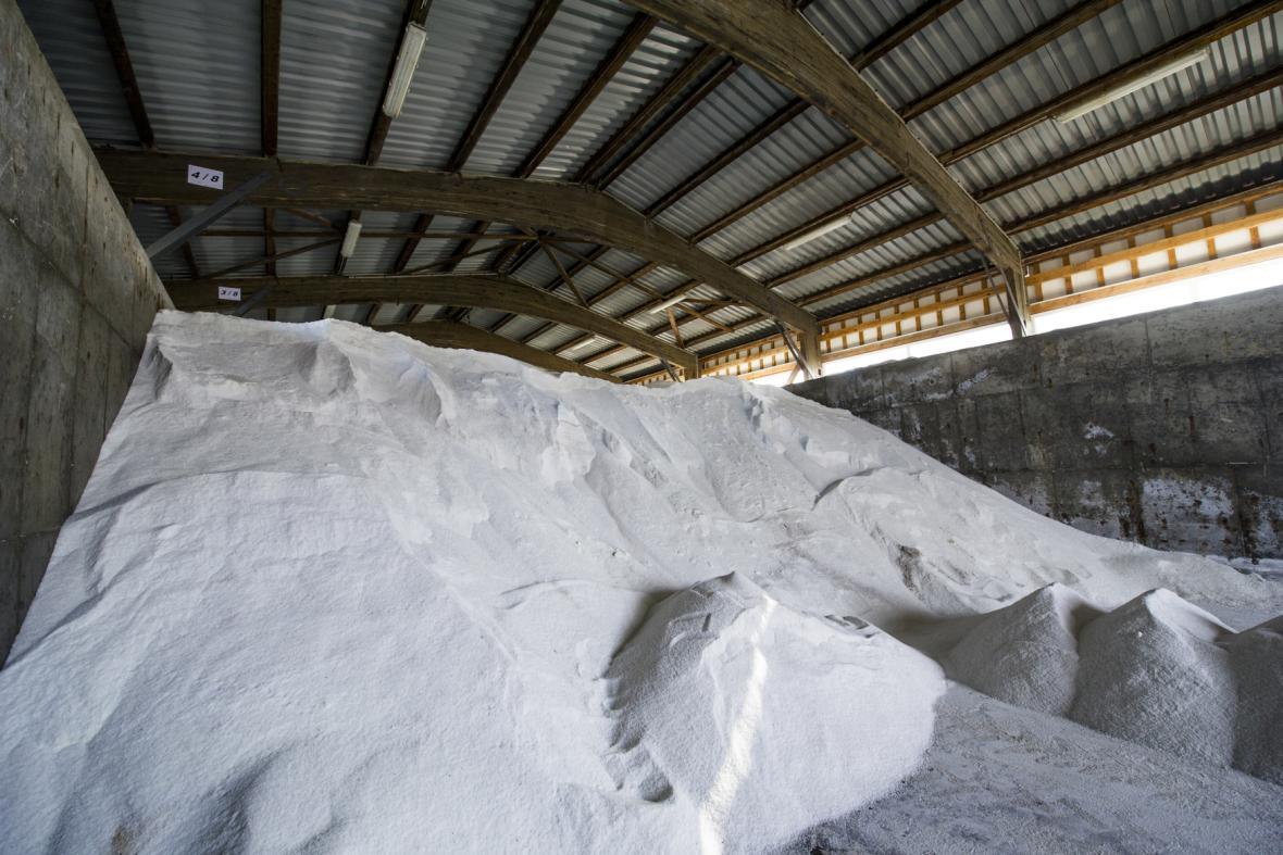 Sklad soli