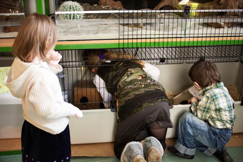 Děti v mateřské škole Rybička mají zoo koutek