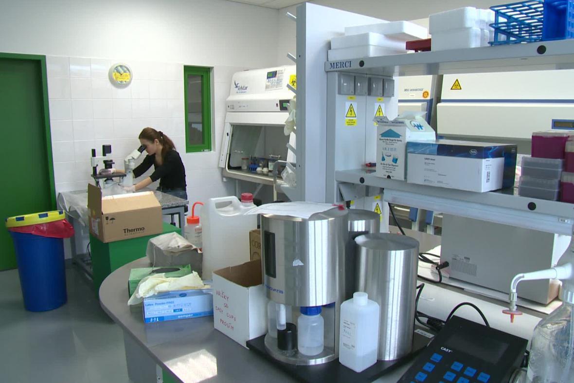 Nové centrum pro výzkum experimentální biologie