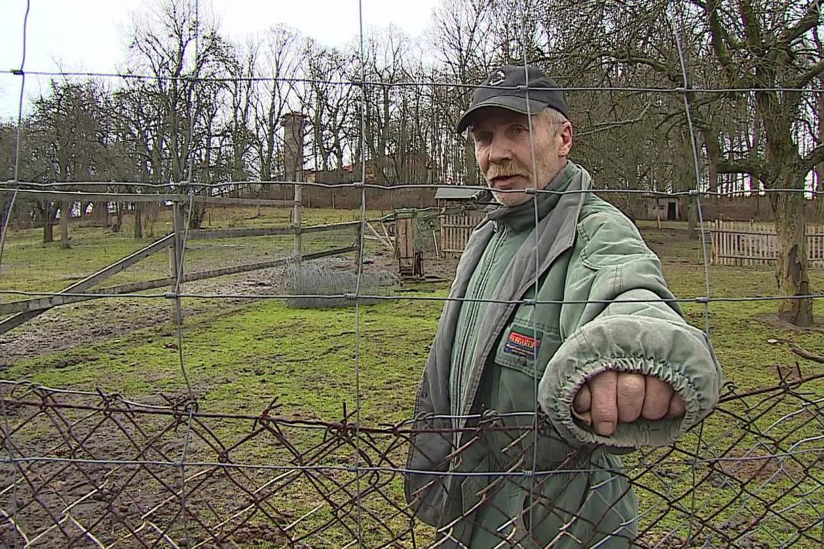 Majitel tvrdí, že zvířata překrmili kolemjdoucí