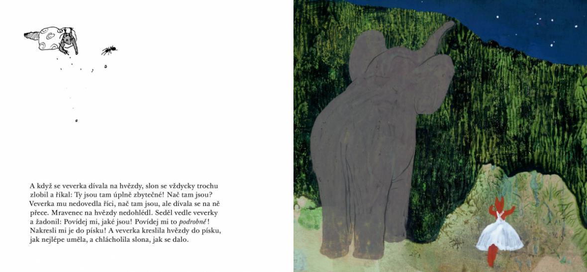 Daisy Mrázková / Slon a mravenec