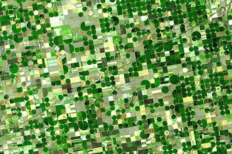 Satelitní snímek kruhových polí v USA