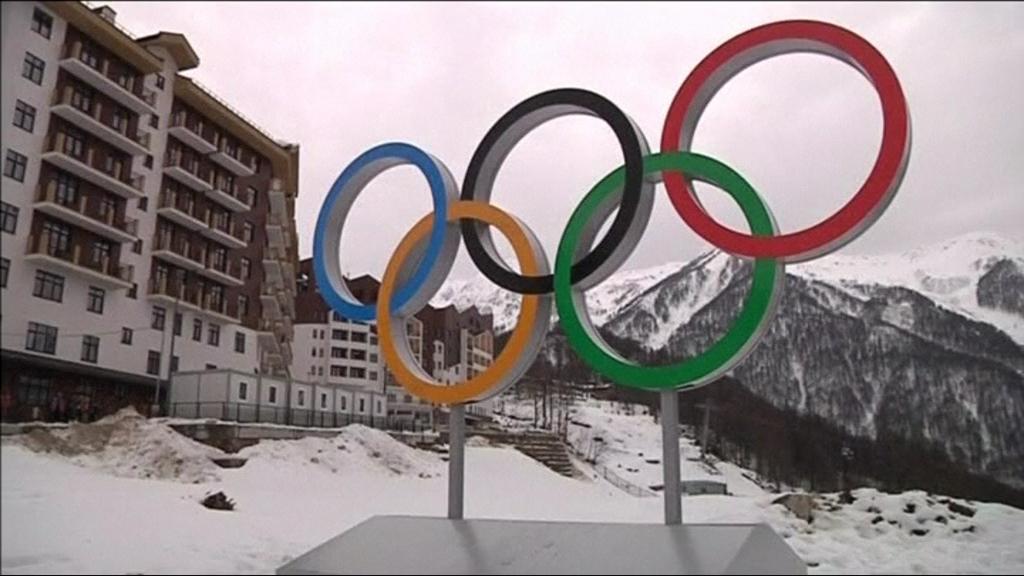 Zimní olympijské hry v Soči