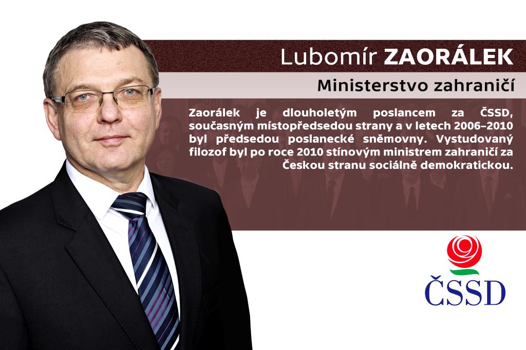 Lubomír Zaorálek – ministerstvo zahraničí