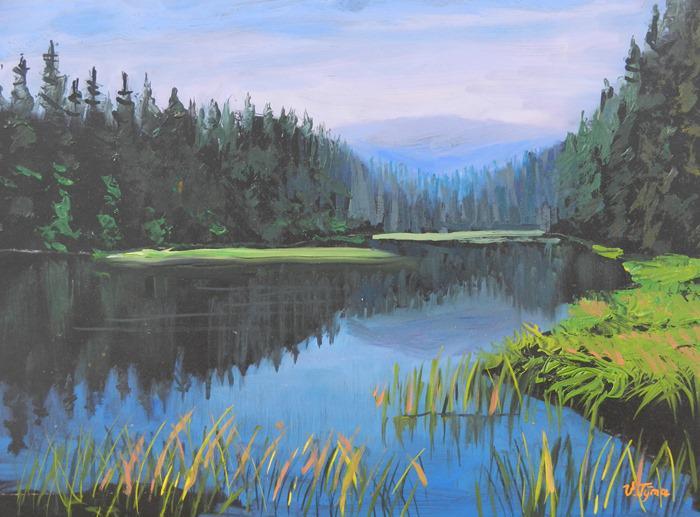 Vlastimil Týma - Šumavské jezero