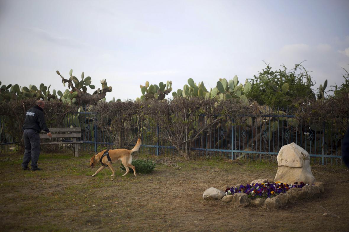 Policejní pes ohledává místo, kde mají být uloženy Šaronovy ostatky