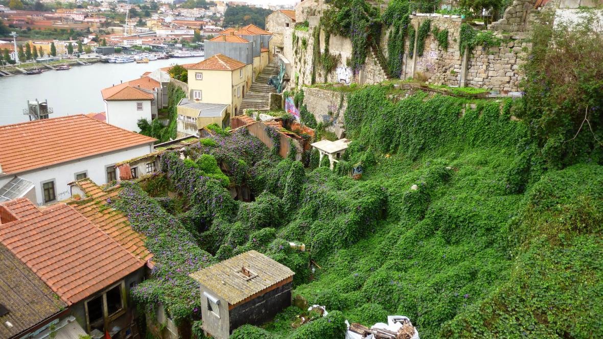 Ruiny v ulicích Porta pomalu pohlcuje příroda