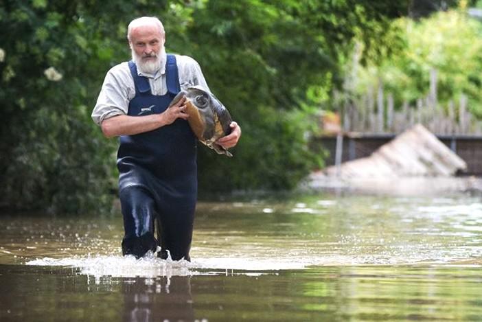 Povodně v pražské zoo