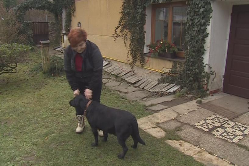 Tamara Psohlavcová dala nalezené fence jméno Kelly