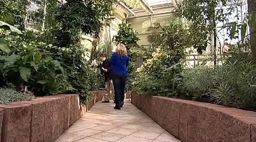 Arboretum v Novém Dvoře