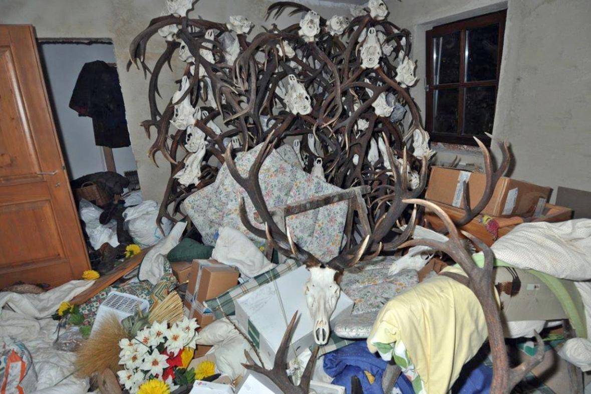 Nahromaděné lovecké trofeje v Huberově domě